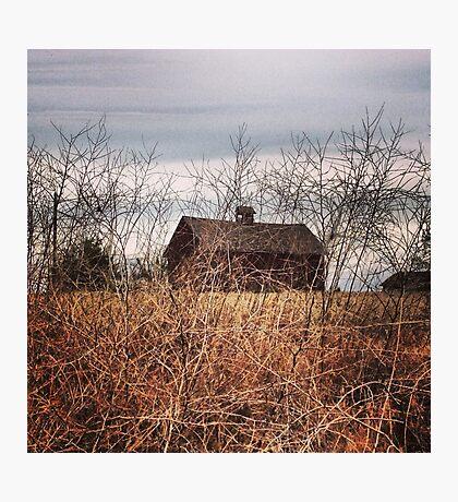 Hidden Barn Photographic Print