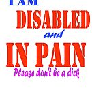 I am disabled and in pain... by KittenFlower