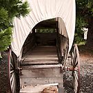 covered wagon by Jeannie Peters