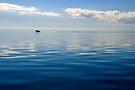 Serenity on Moreton Bay by Renee Hubbard Fine Art Photography