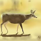 Mule Deer - Sketched on iPad by Ray Cassel