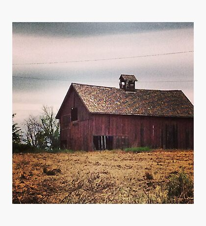 Rustic Red Barn Surrounded by Fields of Gold Photographic Print