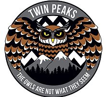 Twin Peaks Owl by Leah Cultice