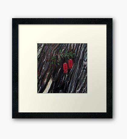 Johnson, K, Bird pollination of the Tasmanian endemic climbing heath, Prionotes Cerinthoides, (Ericaceae),  Framed Print