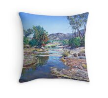 Restful View with the Heysen Range Throw Pillow