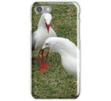 Seagull Fight iPhone Case/Skin