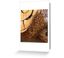 A swarm of Bees on the wood pile Greeting Card