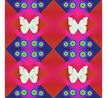 Butterflies Lux Y Photographic Print