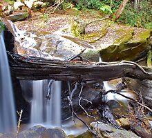 Somersby Falls / no1. by Warren  Patten