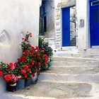 Blue Doors, Red Flowers by Christina Backus