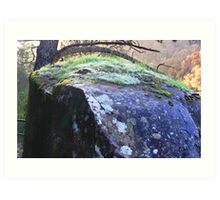 Cataract Gorge Rocks 1E Art Print