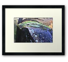 Cataract Gorge Rocks 1E Framed Print