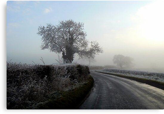 Misty Morning by Trevor Kersley