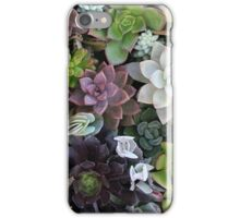 Suuculents iPhone Case/Skin