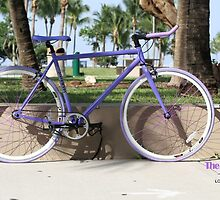 Single Speed Bikes by locofixie