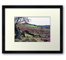 Hawnby Moor Framed Print