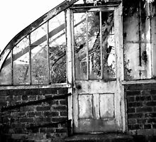 Disused Greenhouse by Julesrules