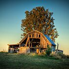 Highway 81 Barn by C David Cook