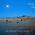Merry Christmas by Robert Elliott