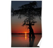 Lake Drummond Canvas Poster