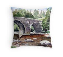 """Dippers"" - The River Dart, Dartmoor Throw Pillow"