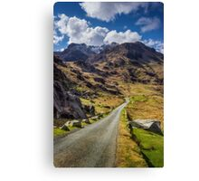 Road To Exploration Canvas Print