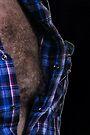 daddy bear by gary roberts