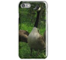Geese in a Meadow iPhone Case/Skin