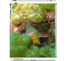 Welcome to my underwater world iPad Case/Skin