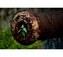 Green planet or shoot me but I'll grow again Photographic Print