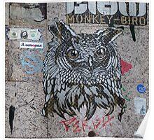 Owl 'Monkey Bird' Graffiti  Poster