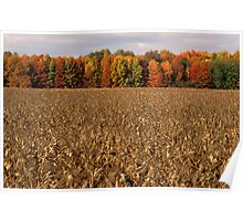 Autumn Across the Field Poster