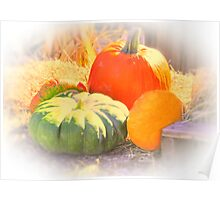 Softness Of Fall Poster
