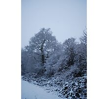 Snow Photographic Print