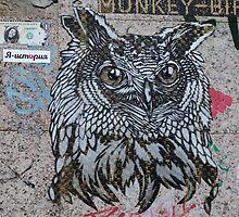 Owl 'Monkey Bird' Graffiti  by Louff