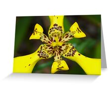 Explosion in yellow Greeting Card