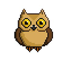 8-Bit Owl Photographic Print