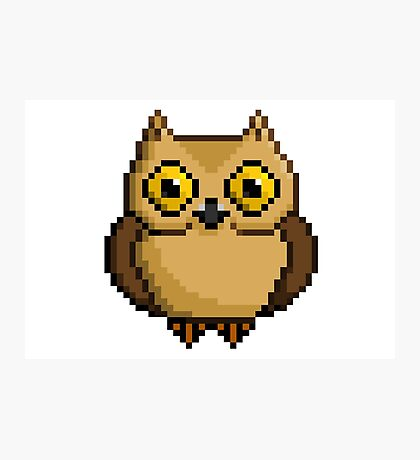 8-Bit Owl Photographic Print