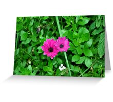 Unstoppable Love Greeting Card
