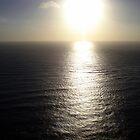 Shiny Evening by cmehta82