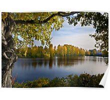 River Oulujoki, autumn Poster