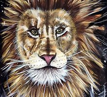 Big Cat Series Lion  by JulieHall20