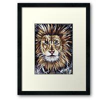 Big Cat Series Lion  Framed Print