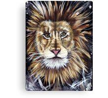 Big Cat Series Lion  Canvas Print
