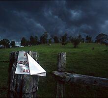 Approaching Storm !! by David Cash