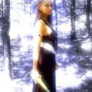 Hidden in the Fairy Veil  by Tony Diana