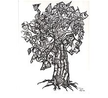 The Tree of the Strange the Fruit Photographic Print