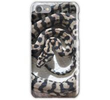 Black & White Jungle Python iPhone Case/Skin