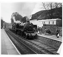 Train in black and white  Poster