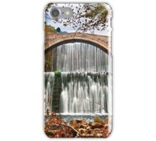 Passage to Middle Earth iPhone Case/Skin